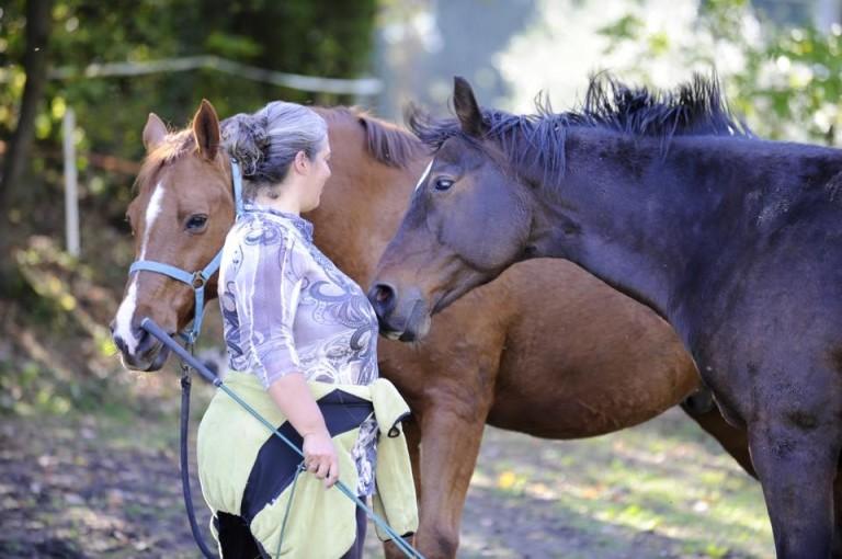 Guarire se stessi con l'aiuto dei cavalli