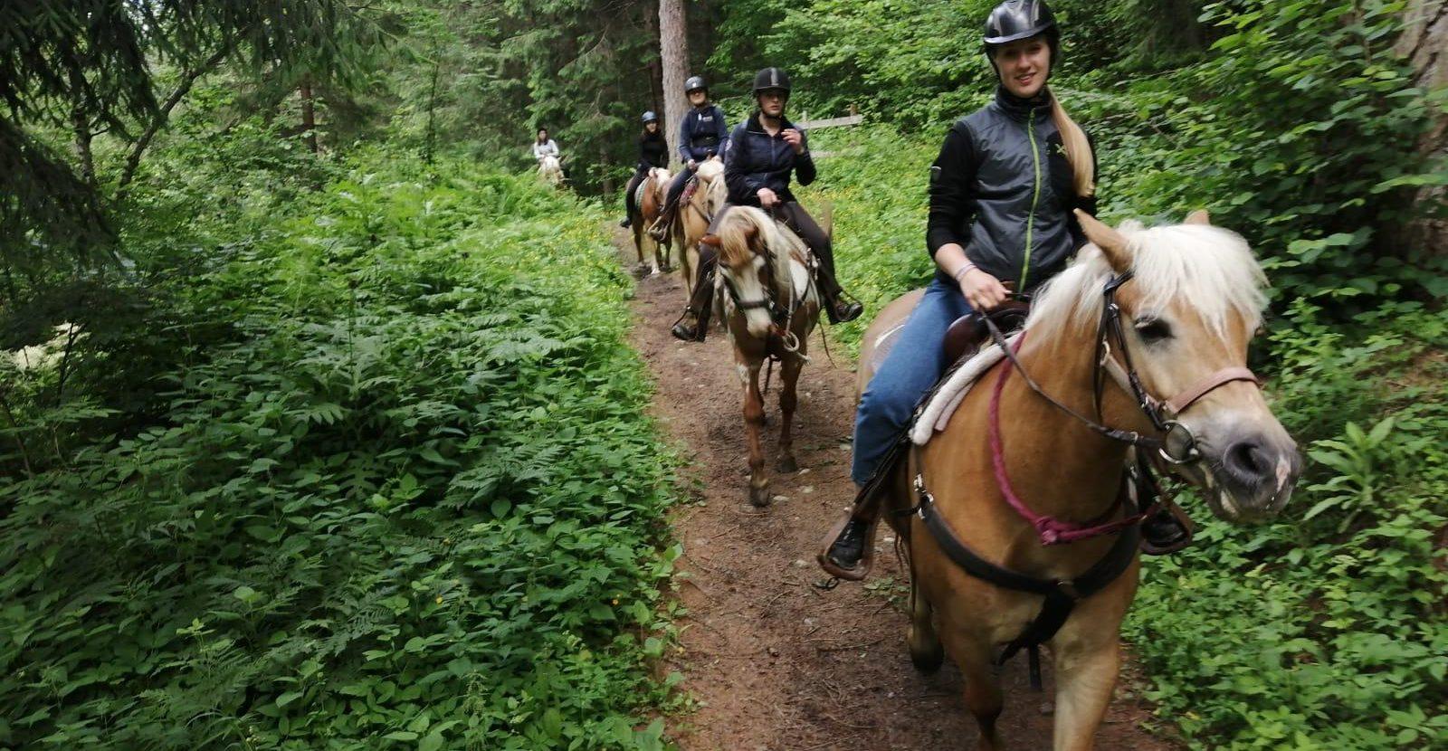 Scuola di trekking a cavallo