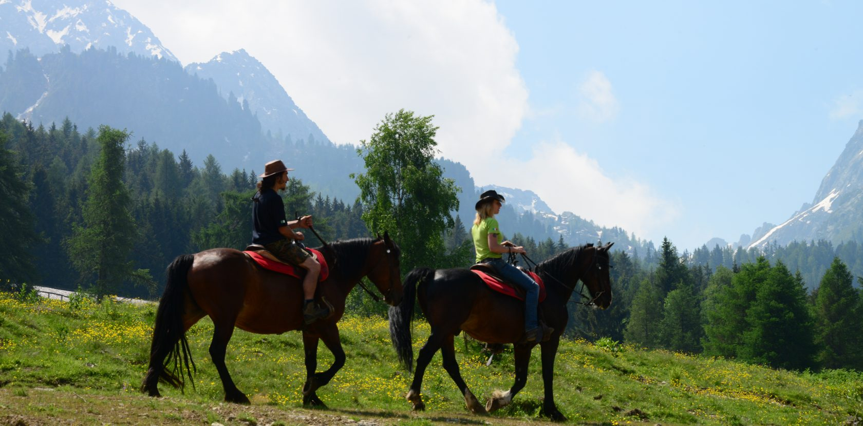 passeggiata con cavalli