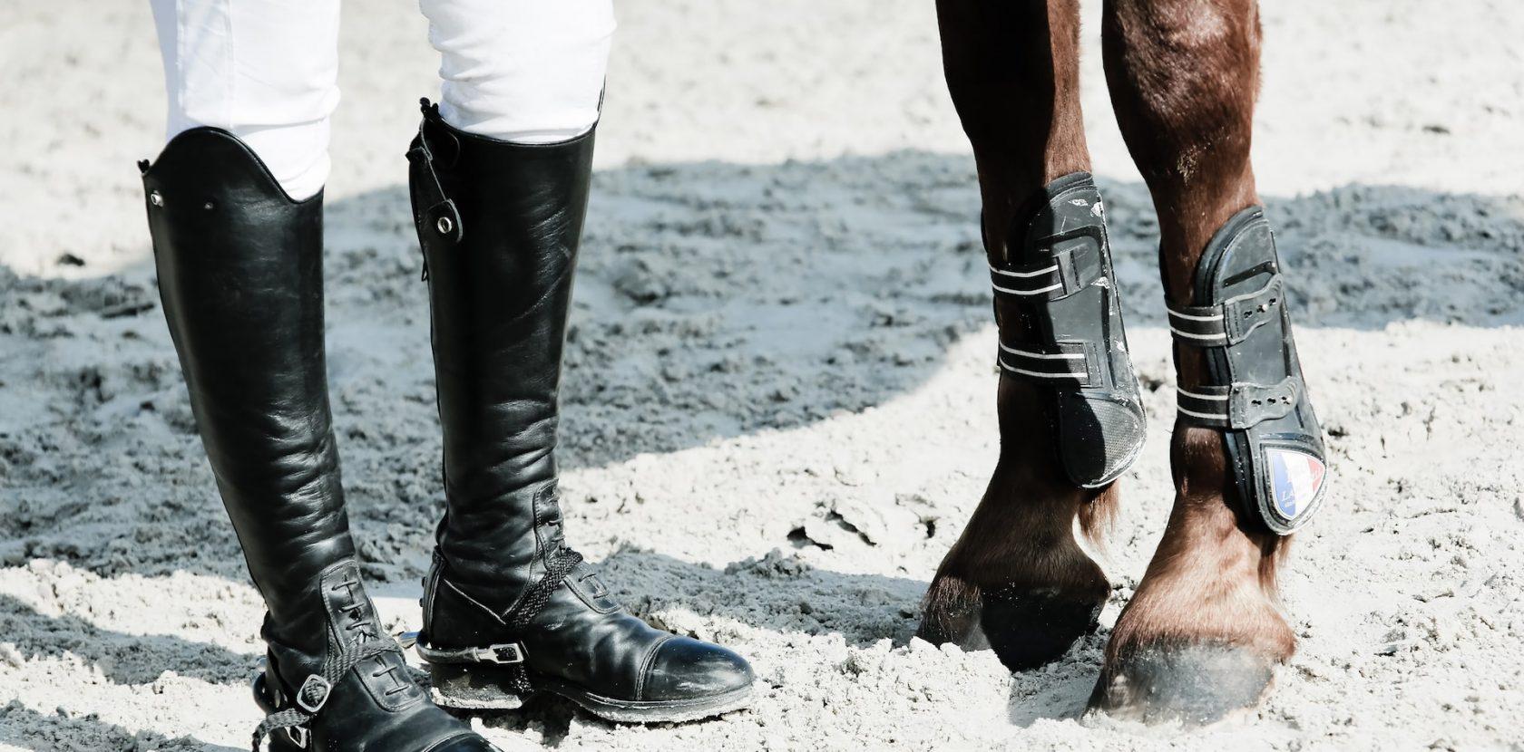 Cosa ti serve per andare a cavallo?