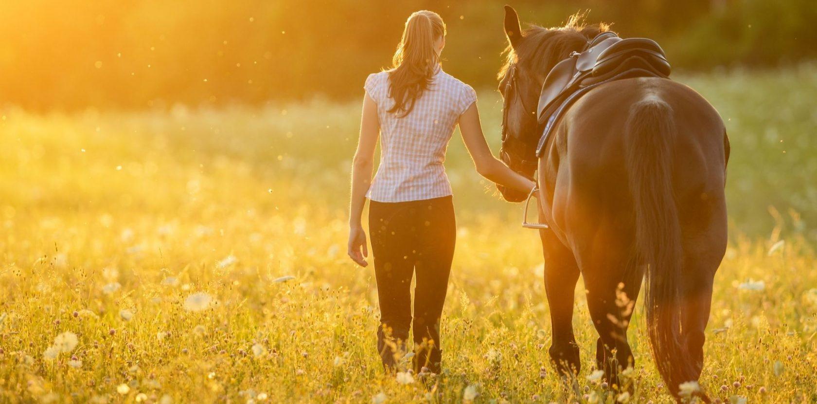 Benessere a cavallo e shirin yoku
