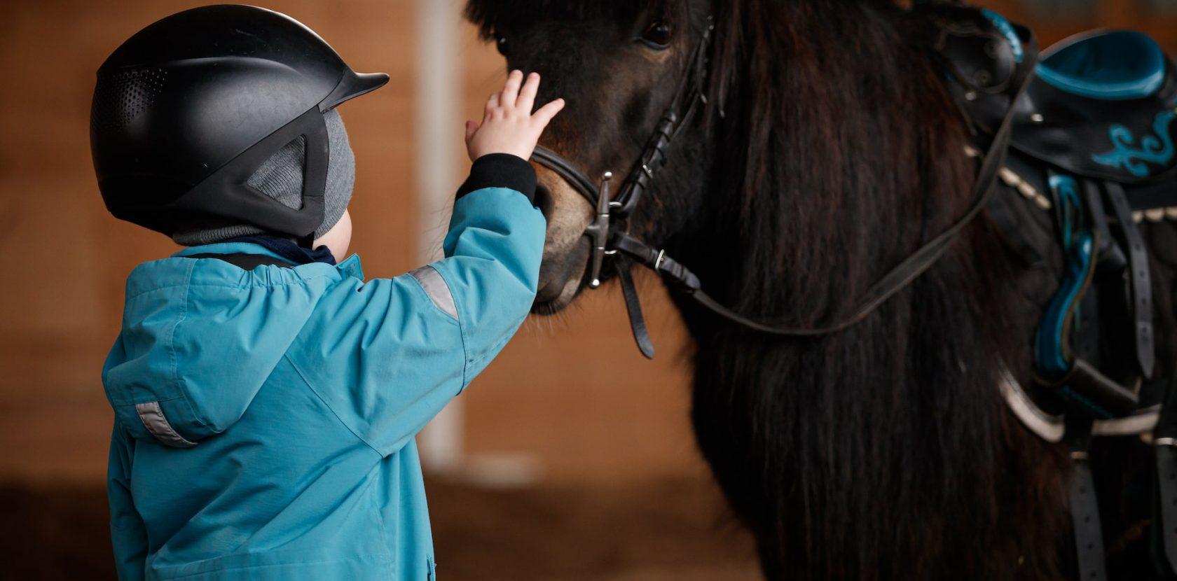 Pony per bambini