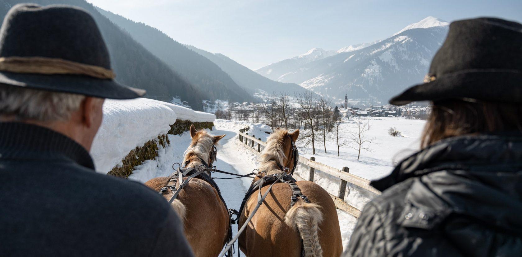 Slitta con cavalli sulla neve